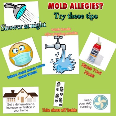 What is causing my allergies in february