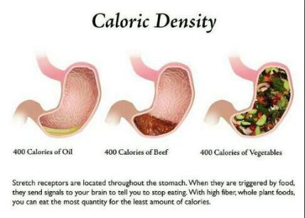 caloric-density