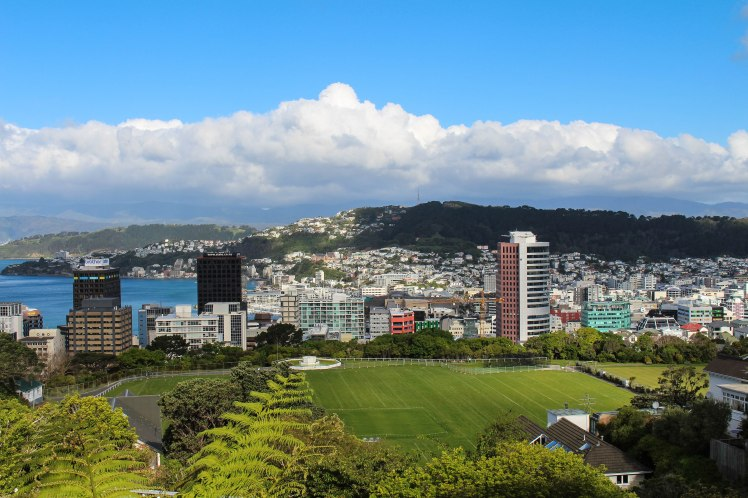 wellington-view-1-of-1