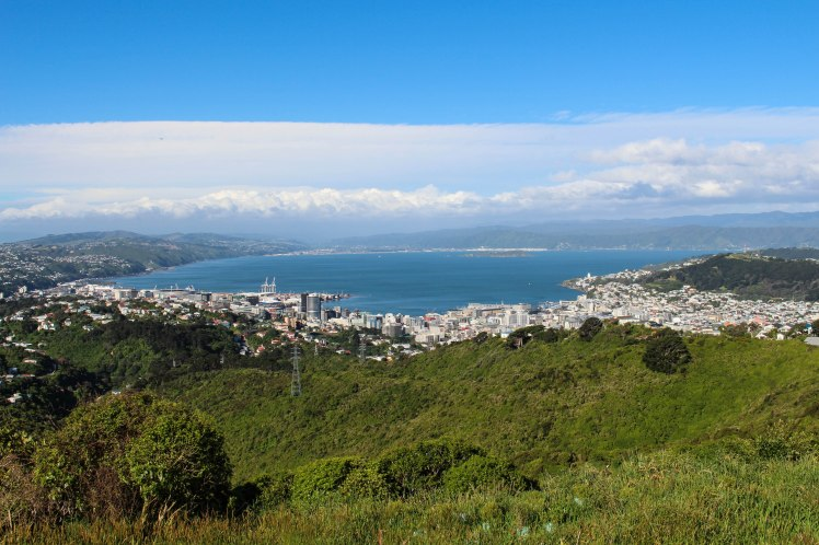 wellington-view-wind-t-1-of-1